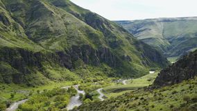 Ποταμός των βουνών που καλύπτονται μεταξύ με τη βλάστηση απόθεμα βίντεο