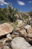 Ποταμός των βράχων Στοκ Εικόνες
