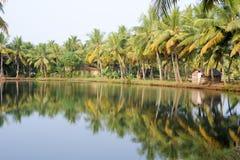 Ποταμός των τελμάτων σε Kollam στοκ εικόνα