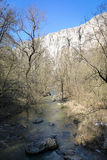 Ποταμός - φαράγγι Turda - Cheile Turzii, Τρανσυλβανία, Ρουμανία Στοκ εικόνες με δικαίωμα ελεύθερης χρήσης