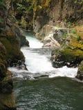 ποταμός φαραγγιών ohanapecosh Στοκ φωτογραφία με δικαίωμα ελεύθερης χρήσης
