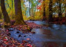 Ποταμός φθινοπώρου Στοκ εικόνες με δικαίωμα ελεύθερης χρήσης