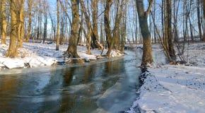 Ποταμός Χειμώνας Στοκ Φωτογραφία