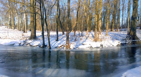 Ποταμός Χειμώνας Στοκ Φωτογραφίες
