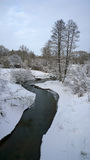 Ποταμός Χειμώνας Στοκ εικόνες με δικαίωμα ελεύθερης χρήσης