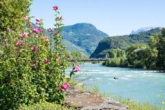 Ποταμός Adige στο Μπολτζάνο στοκ φωτογραφία με δικαίωμα ελεύθερης χρήσης