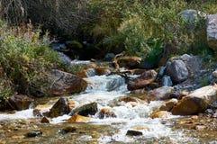 Ποταμός Akbulak, Καζακστάν Στοκ εικόνα με δικαίωμα ελεύθερης χρήσης