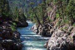 Ποταμός Animas Στοκ φωτογραφία με δικαίωμα ελεύθερης χρήσης