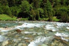 Ποταμός Ara σε Bujaruelo στην περιοχή Aragà ³ ν στην Ισπανία Στοκ εικόνα με δικαίωμα ελεύθερης χρήσης