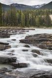 Ποταμός Athabasca στις πτώσεις Athabasca με τα βουνά Στοκ εικόνες με δικαίωμα ελεύθερης χρήσης