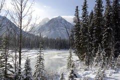 ποταμός athabasca Στοκ εικόνα με δικαίωμα ελεύθερης χρήσης