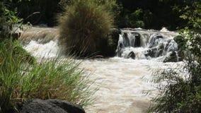 Ποταμός Awash απόθεμα βίντεο