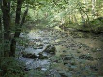 Ποταμός Beiu στο εθνικό πάρκο Cheile Nerei, Ρουμανία Στοκ φωτογραφίες με δικαίωμα ελεύθερης χρήσης