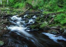 Ποταμός Blanice στη Βοημία Στοκ Εικόνες