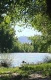 ποταμός bolta ara Στοκ Εικόνες