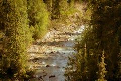 Ποταμός Bugaboo Στοκ Εικόνες