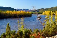 Ποταμός Buyunda Στοκ Φωτογραφίες