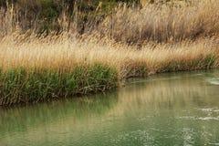 Ποταμός Cabriel στο δρόμο του μέσω του χωριού Casas del Ρίο, Albacete, Ισπανία Στοκ εικόνα με δικαίωμα ελεύθερης χρήσης