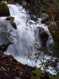 Ποταμός Cardener Καταλωνία Στοκ εικόνα με δικαίωμα ελεύθερης χρήσης