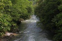 Ποταμός Cerna στην άνοιξη, Herculane, Ρουμανία στοκ εικόνα