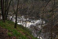 Ποταμός Clyde νέο Lanark Στοκ φωτογραφίες με δικαίωμα ελεύθερης χρήσης