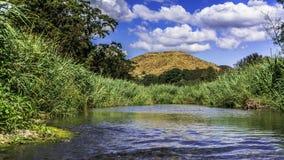 Ποταμός Coamo μια ηλιόλουστη ημέρα Στοκ Εικόνες