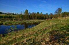 Ποταμός Derzha μπορέστε Στοκ Εικόνα