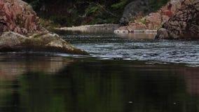 Ποταμός findhorn, morayshire, Σκωτία, χαμηλού επιπέδου ήρεμος και ειρηνικός φιλμ μικρού μήκους