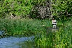 ποταμός flyfisher αλιειών στοκ φωτογραφία με δικαίωμα ελεύθερης χρήσης