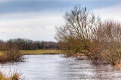 Ποταμός Frome στο μαλλί στοκ εικόνα