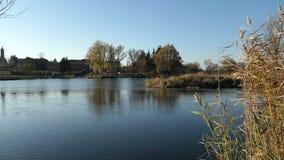 Ποταμός Havel κατά τη διάρκεια του χρόνου φθινοπώρου Τοπίο Havelland στη Γερμανία Δέντρο και κάλαμος ιτιών στην ακτή φιλμ μικρού μήκους