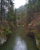Ποταμός Hornad, σλοβάκικος παράδεισος Slovensky Raj, Σλοβακία Στοκ Εικόνες