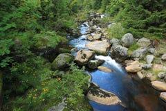 Ποταμός Jizera Στοκ φωτογραφίες με δικαίωμα ελεύθερης χρήσης