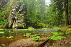 Ποταμός Kamenice Στοκ Φωτογραφία