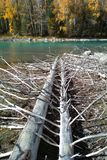 ποταμός kanas Στοκ Φωτογραφίες