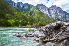Ποταμός Katun, Ρωσία, Σιβηρία, βουνά Altai, Katun ri βουνών Στοκ Εικόνες