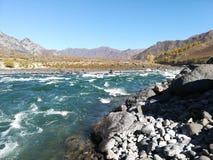 Ποταμός Katun Altai Respublika στοκ φωτογραφία με δικαίωμα ελεύθερης χρήσης