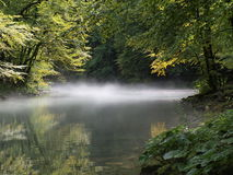 ποταμός kupa Στοκ Εικόνες