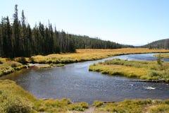 ποταμός lewis Στοκ εικόνες με δικαίωμα ελεύθερης χρήσης