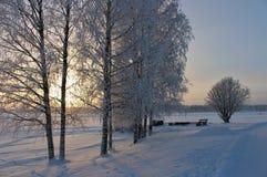 Ποταμός Lule στο χειμερινό ήλιο στοκ εικόνες
