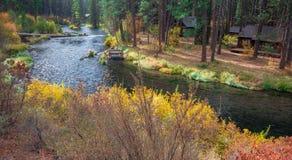 Ποταμός Metolius Στοκ Εικόνα