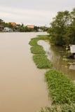 ποταμός nakornchaisri Στοκ Φωτογραφίες