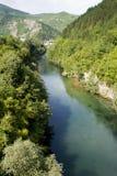 ποταμός neretva Στοκ φωτογραφία με δικαίωμα ελεύθερης χρήσης