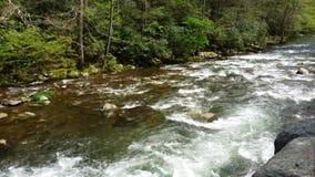 Ποταμός Ocanaluftee απόθεμα βίντεο