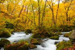 ποταμός oirase χρωμάτων φθινοπώρ&omi Στοκ φωτογραφία με δικαίωμα ελεύθερης χρήσης