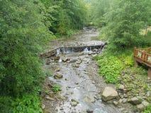 Ποταμός Prut βουνών Στοκ εικόνα με δικαίωμα ελεύθερης χρήσης