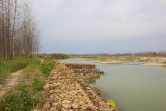 Ποταμός Punjabi με τα δέντρα λευκών Στοκ φωτογραφία με δικαίωμα ελεύθερης χρήσης