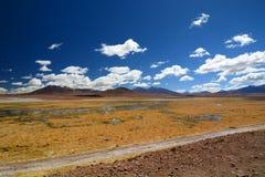 Ποταμός Putana SAN Pedro de Atacama Περιοχή Antofagasta Χιλή Στοκ Φωτογραφία