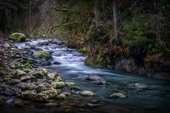 Ποταμός Quilcene στοκ εικόνες με δικαίωμα ελεύθερης χρήσης