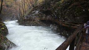 Ποταμός Radovna Φαράγγι Vintgar Ίχνος και γέφυρα απόθεμα βίντεο